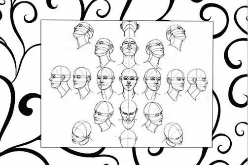 Các đường trục của khuôn mặt khi nhìn các hướng