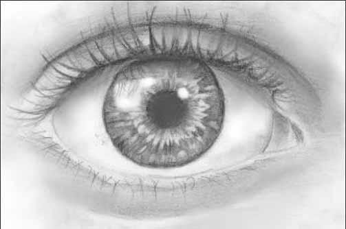 Đôi mắt là cửa sổ tâm hồn