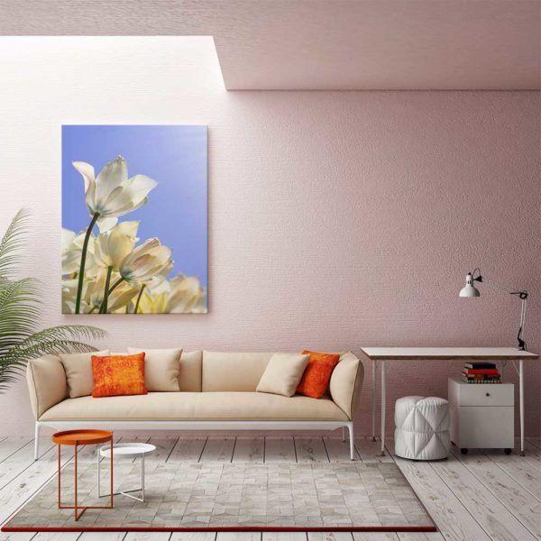 Tranh hoa tulip treo tường màu hồng