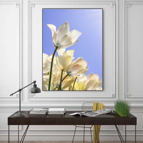 Tranh hoa tulip treo phòng khách
